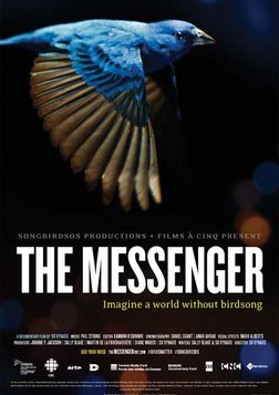 The Messenger - An Ode to the Imperiled Songbird
